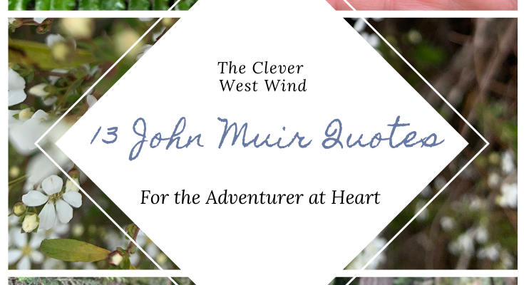 13 John Muir Quotes for the Adventurer at Heart